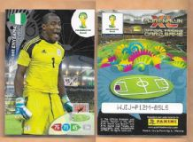 Nigeria Vincent Enyeama Lille 263 2014